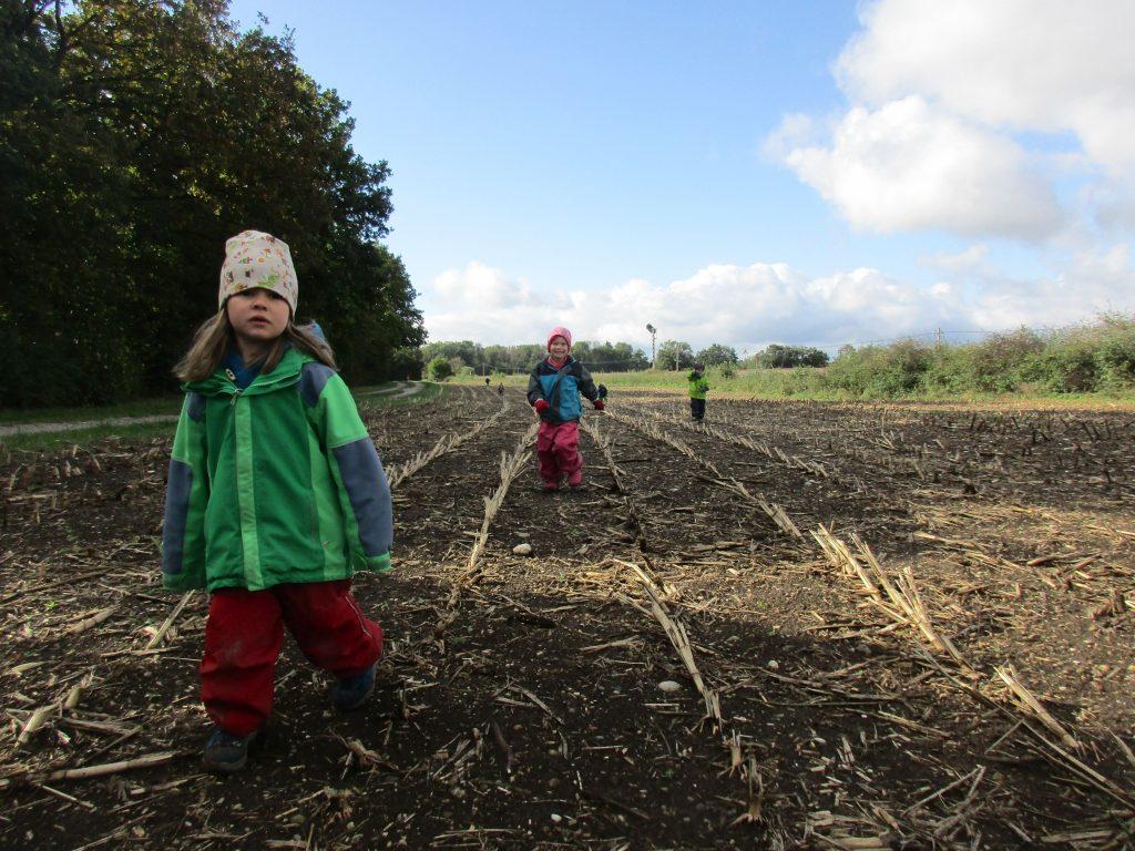 Mehrere Kinder auf einem Acker nahe des Waldes