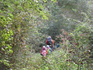 Eine Gruppe von Kindern die mit einem Erwachsenen durch einen dichten Wald laufen